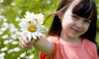 flower, rose, sunflower, children, Romantic little girl, happiness, child,  ...