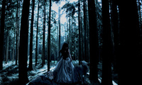 готика, лес, Gothic forrest fairy, девушка, волки