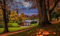 park, water, autumn, forest, nature, view, alley, walk, fall, Leaves, river ...