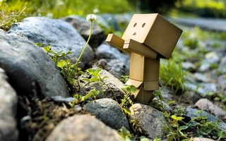 danbo, природа, камни, одуваньчик, flower, box, Danboard, цветок, robot, toy, зелень