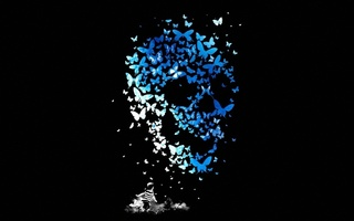 mathiole, ребенок, kid, Matheus lopes castro, butterflys, бабочки, skull, череп