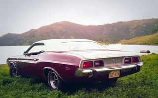 Dodge, car, challenger, muscle