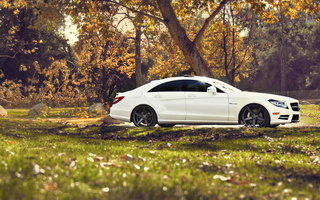 Mercedes benz cls, природа, тюнинг, мерседес