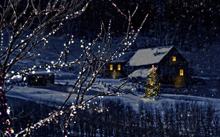 city, nature, town, christmas tree, new year, Merry christmas, magic christmas night, houses