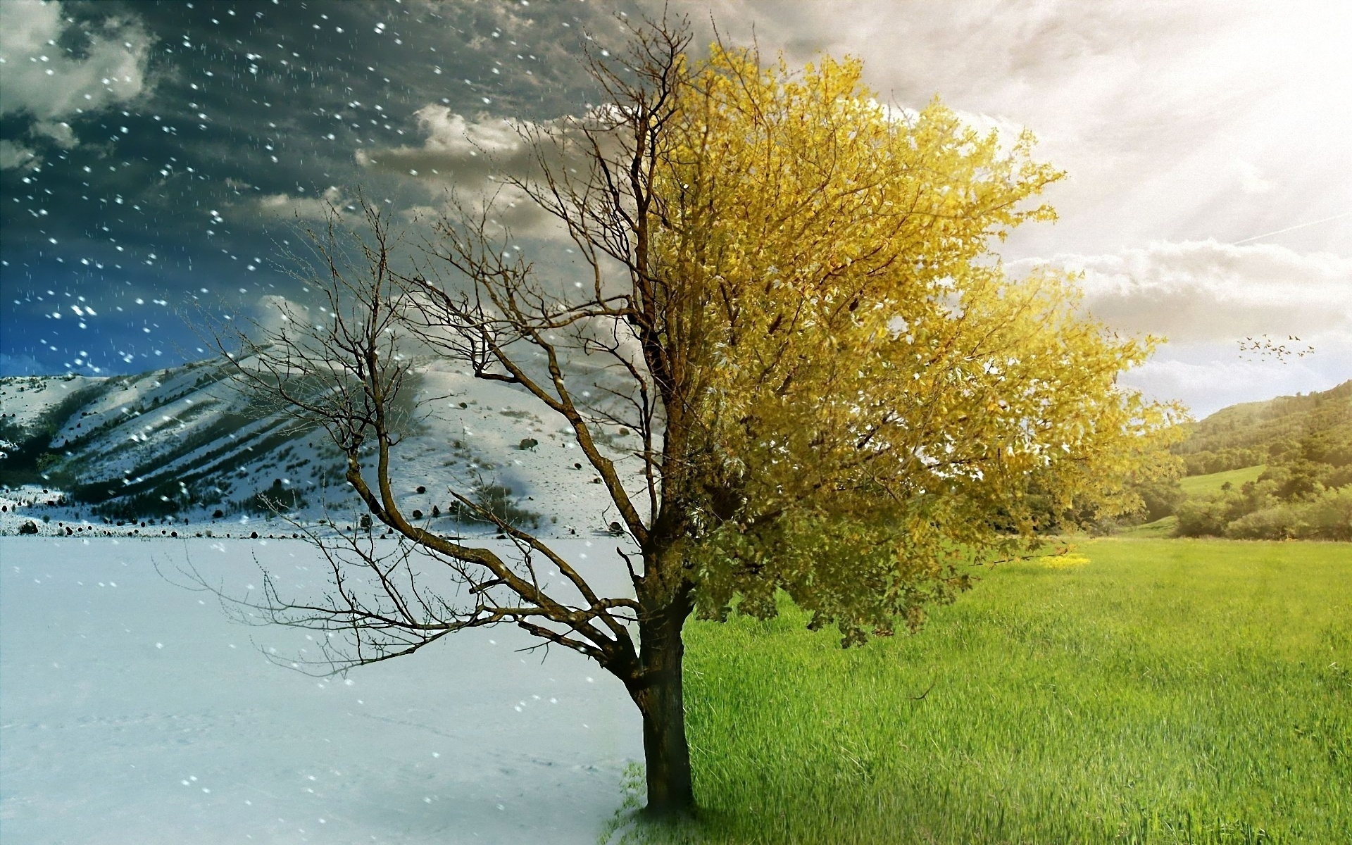 a comparison for my like and dislike of summer and winter Around the world the year is divided into four seasons--spring, summer, autumn (fall), and winter the date on which each season begins depends on whether you are using the astronomical divisions or the meteorological divisions.